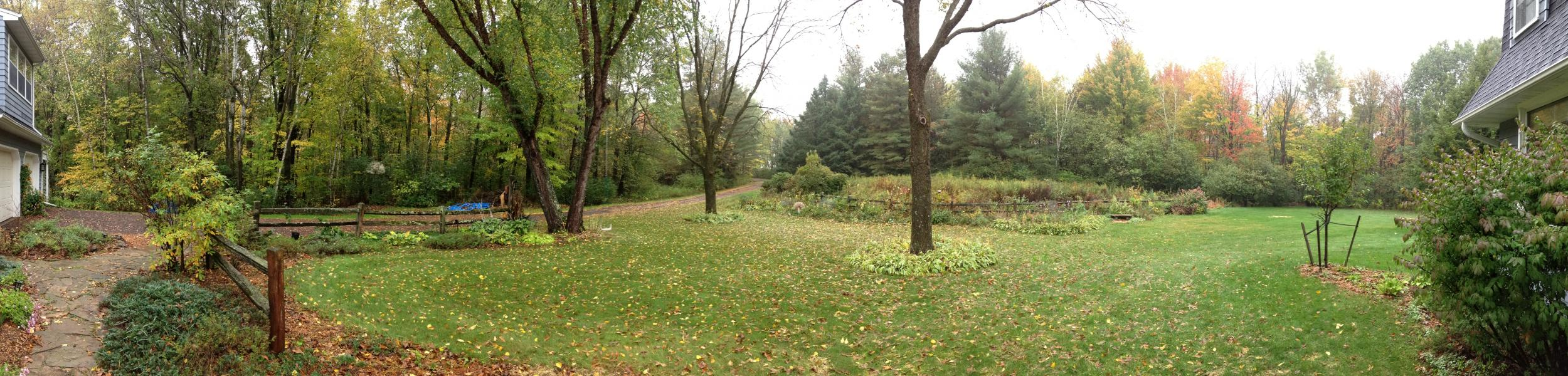 Panorama of a yard in autumn